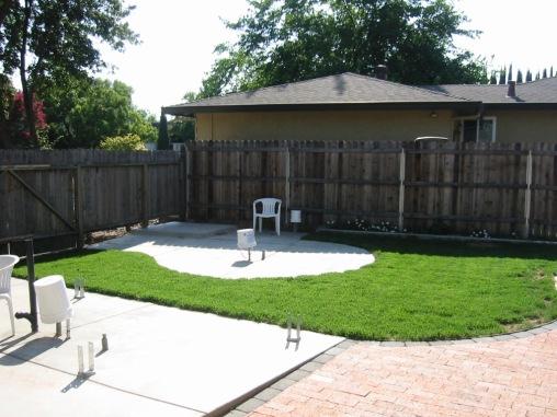 New grass softens the backyard